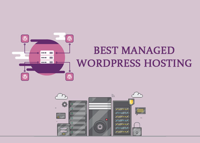 Best managed WordPress hosting providing Companies
