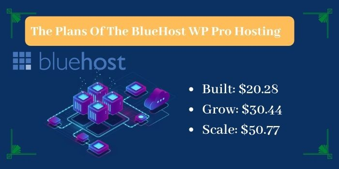 The Plans of WP Pro Hosting