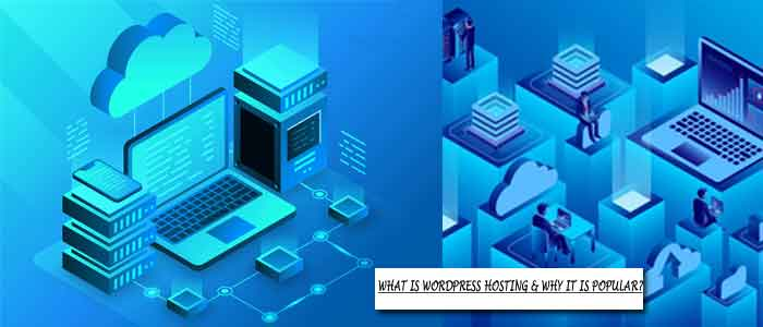 What is WordPress Hosting & Why It is Popular?