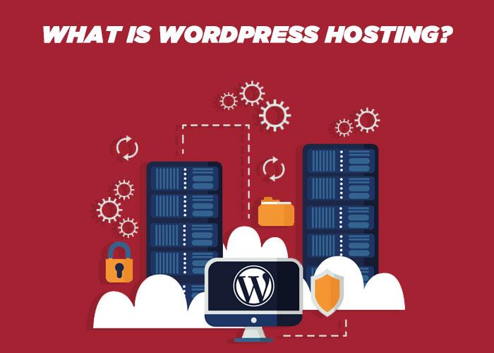 [A Detailed Review] WordPress Hosting vs Shared Web Hosting